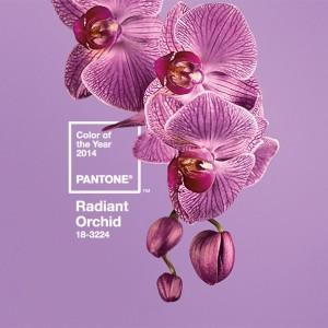 Pantone's radiant 2014